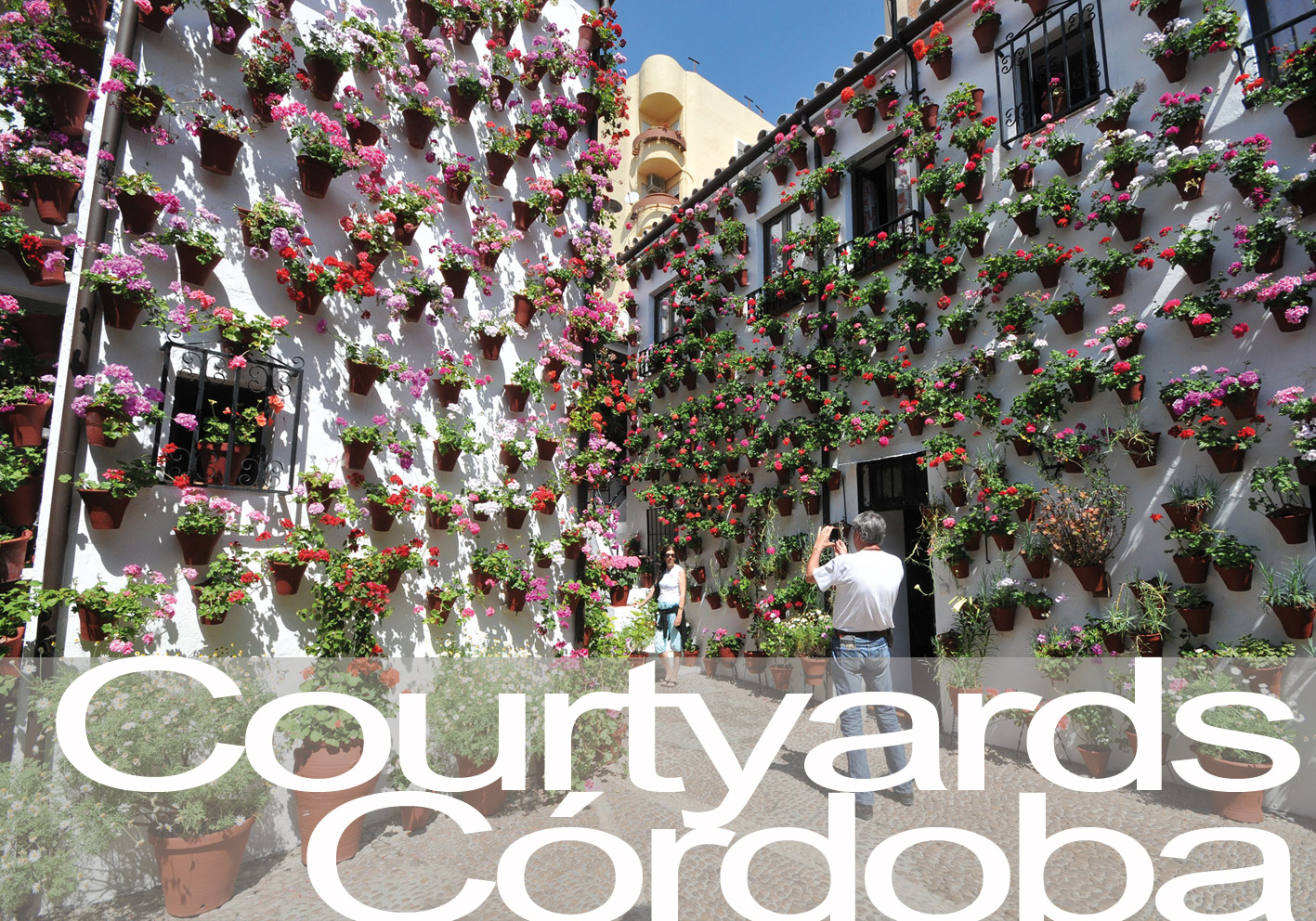 Visit the courtyards of Cordoba